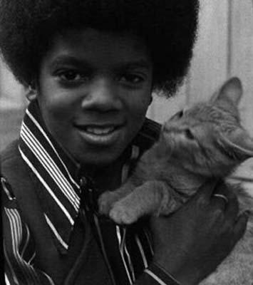 "Immagini era  ""JACKSON 5 - JACKSONS"" - Pagina 27 Little-Mikey-and-kitten-michael-jackson-23812202-355-400"