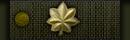 ¤| Major- Béret Vert - SG-2