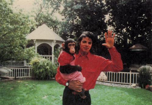 "Immagini era ""BAD"" - Pagina 12 MJ-michael-jackson-25756410-500-345"