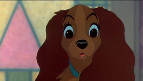 No seré un perro casero (La dama y el vagabundo fanfic) - Página 2 Lady-and-the-Tramp-classic-disney-27956370-500-284