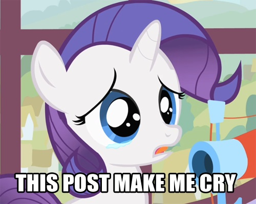 Cómo ser una buena novia My-Little-Pony-Meme-my-little-pony-memes-35355240-500-399