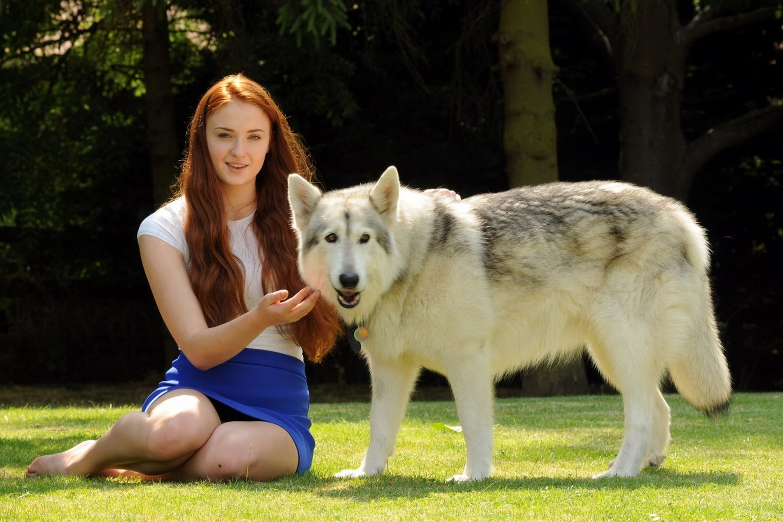Quelle actrice pour jouer ELSA ? - Page 3 Sophie-Turner-Photoshoot-sophie-turner-35332479-2197-1463