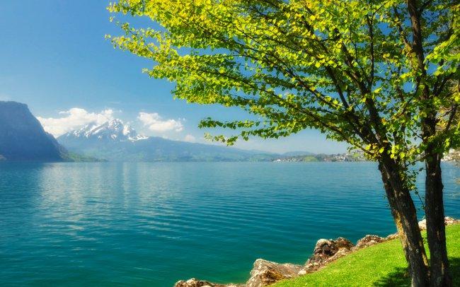 ¡¡¡El maravilloso mundo en el que vivimos!!! - Página 2 1395948325_imagedesktop.ru-204