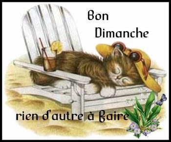 Dimanche 03 Avril 304644_540214180_bon-dimanche-chat-fauteuil_H103247_L