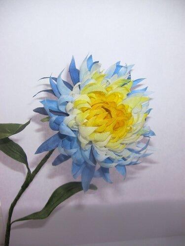Астры и хризантемы - Страница 2 0_78c53_837f198f_L