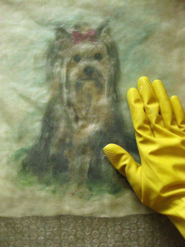 Мастер-класс по валянию обложки с Йорком, рисунок выполнен в технике шерстяной акварели (приваливани 0_2dfad_5c2aebcf_XL