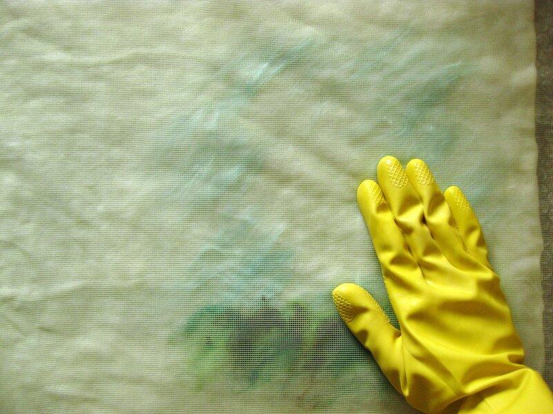 Мастер-класс по валянию обложки с Йорком, рисунок выполнен в технике шерстяной акварели (приваливани 0_2df96_c432c79_XL