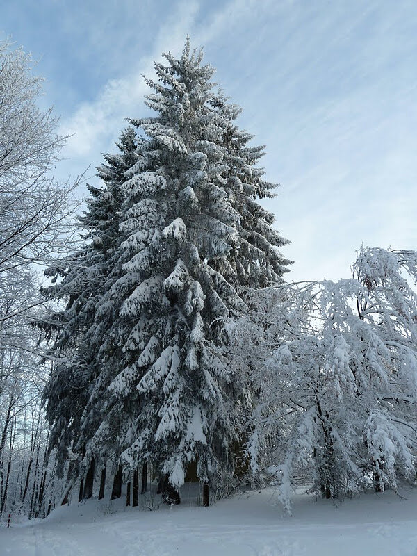 А за окном зима... 0_8127f_51deebe2_XL