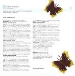 Ромашки, маки, листочки, бабочки, стрекозы... 0_72090_f12d2b58_S