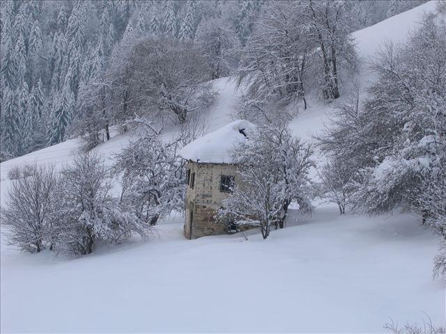 Stare kuće 0_4f98c_23cc2d1a_XL