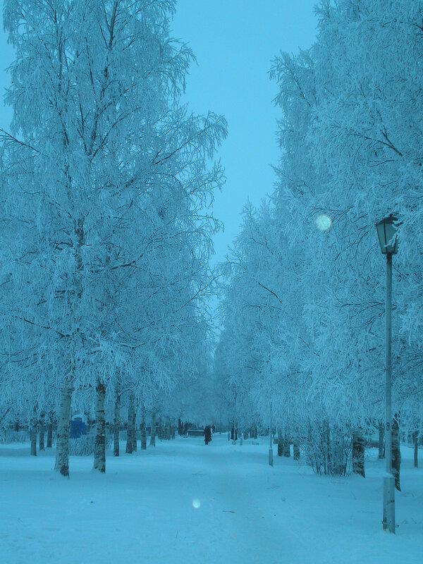 Зимняя сказка на наших фотографиях 0_64087_e1b2fb77_XL