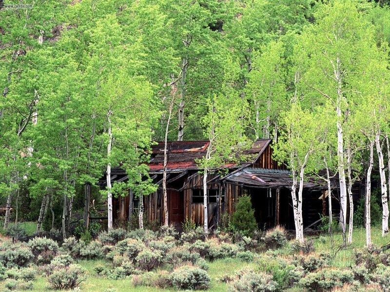 Stare kuće 0_54c13_9f603067_XL