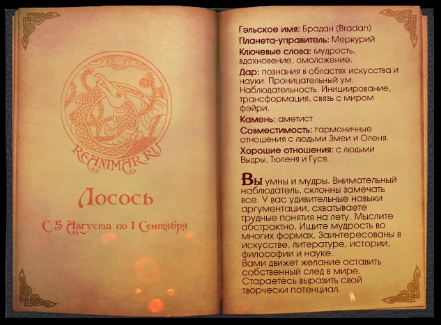 Кельтский гороскоп животных 0_64176_835ba14e_XL
