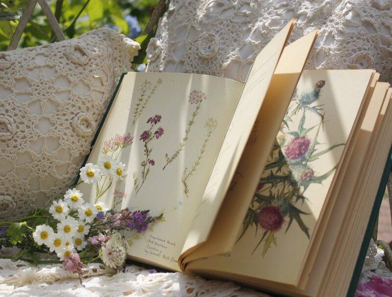 La magia en un libro 0_85b39_9908871a_XL