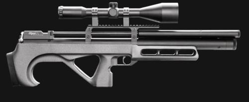 Фотографии различных русских РСР винтовок и пистолетов 0_4c09a_503e956e_L