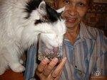 *Здоровое и радостное животное в доме* 0_4ed53_2a8dcdcb_S