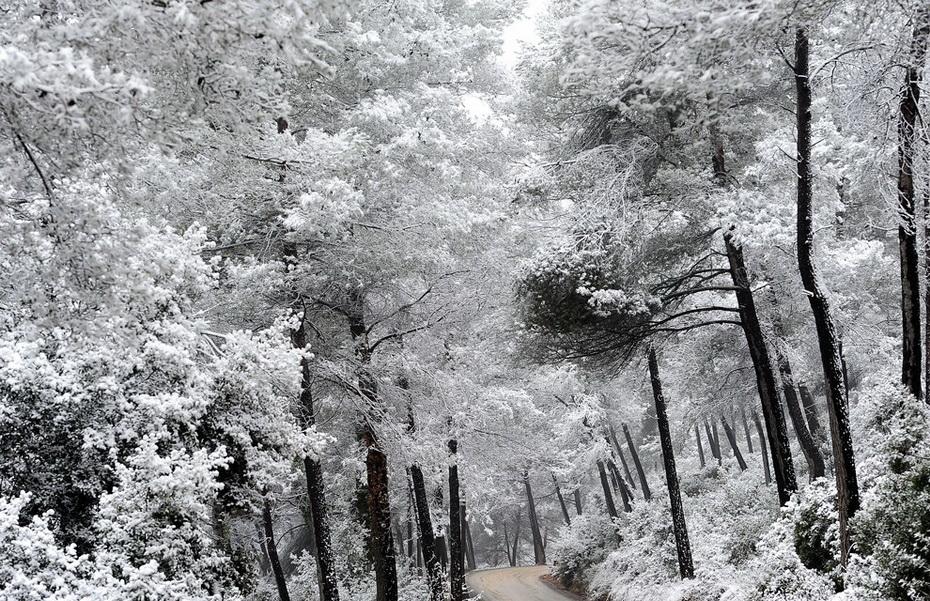 А за окном зима... - Страница 2 0_9dc55_587fa251_orig