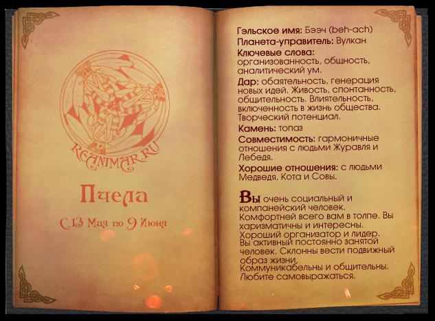 Кельтский гороскоп животных 0_64179_19adb497_XL
