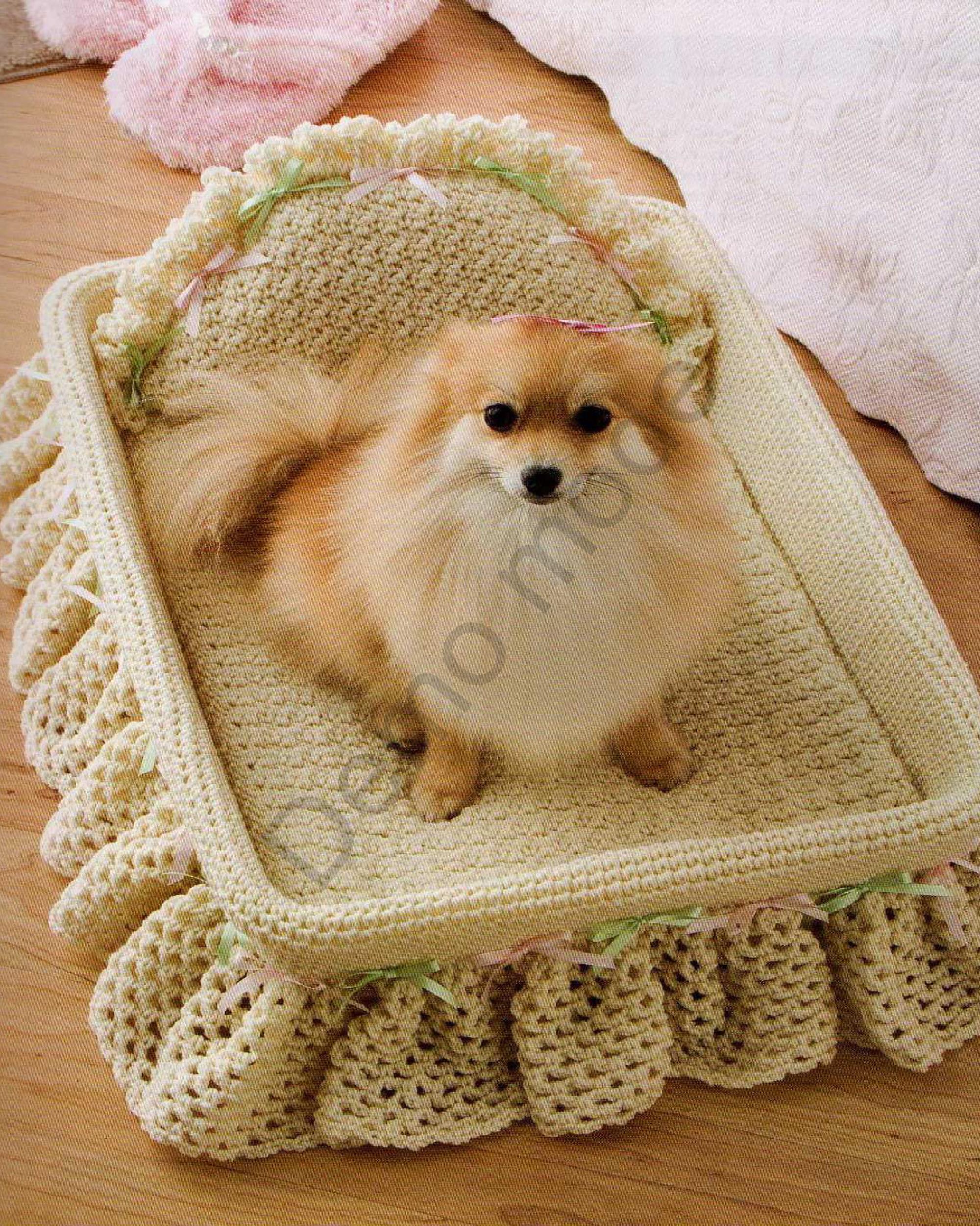 *Здоровое и радостное животное в доме* 0_82b9a_df178884_orig