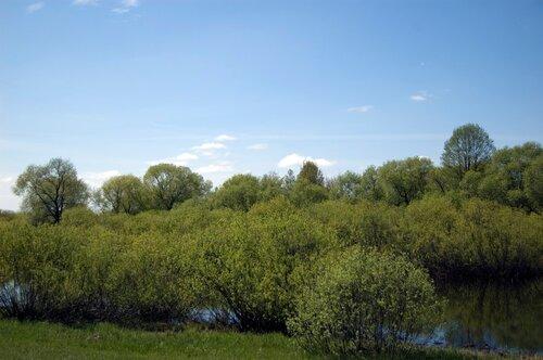 Знакомимся   Бобруйск - гостеприимный чистый и самый зеленый город Беларуси - Страница 2 0_595f4_6454fd75_L.jpg