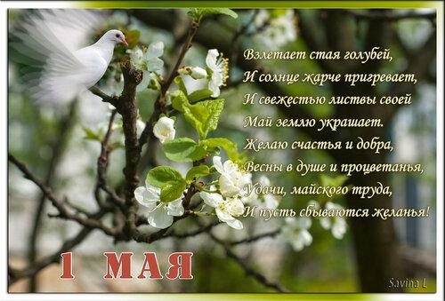 С Первомаем вас, милые женщины!!! 0_7d2ed_7c5cc14d_L
