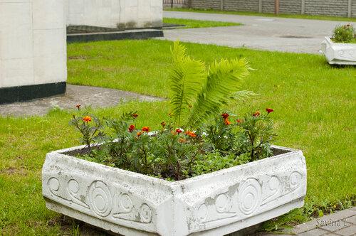 Знакомимся   Бобруйск - гостеприимный чистый и самый зеленый город Беларуси - Страница 2 0_7f6fb_420db57c_L.jpg