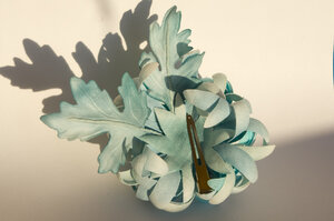 Астры и хризантемы - Страница 2 0_7dd2a_b75f4b04_M