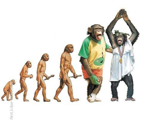 Эволюция.  - Страница 30 0_b38f0_6bf55866_L