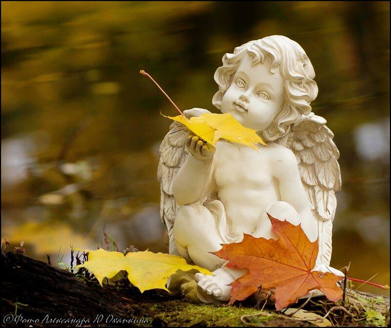 Empieza el otoño. 0_933e1_a160edb8_XL