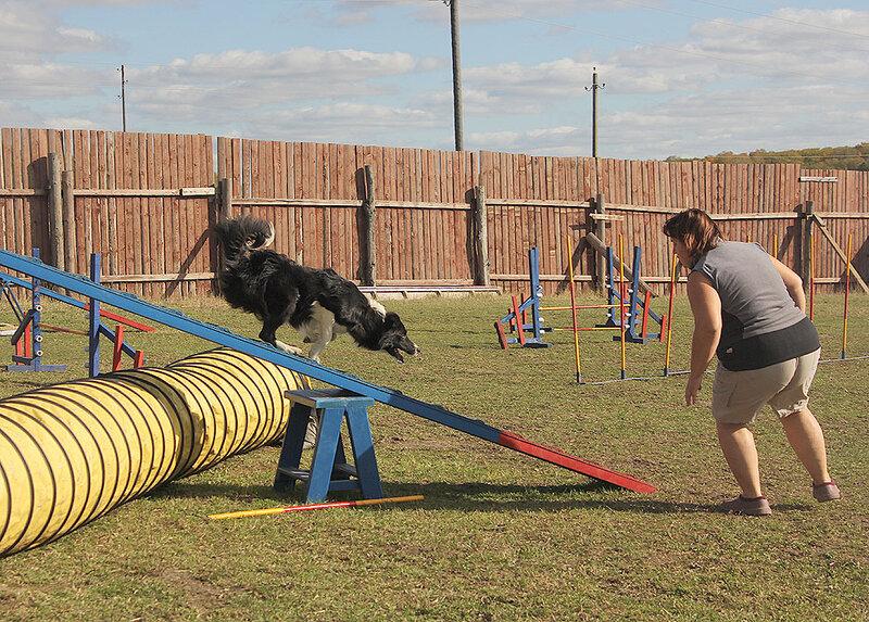 Недельные курсы повышения квалификации для собакообожак :-) Приглашаем всех!!! - Страница 2 0_7dad7_bdfccfdb_XL