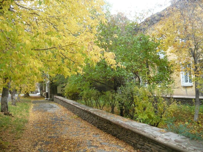 Осенний фотоконкурс 0_8769f_a975eaca_XL