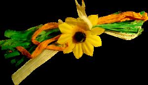 17 октября - Праздник. Чествование выпускников. Выборы новых Амазонок. Поздравления и награждение лучших и пр. 0_a8527_b4e21337_M