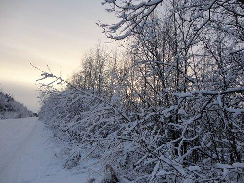Зимняя сказка на наших фотографиях 0_8d2fd_aae44819_L