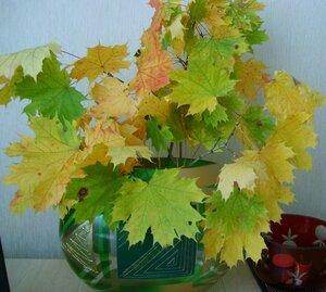 Осенний фотоконкурс 0_8874c_52275c61_M