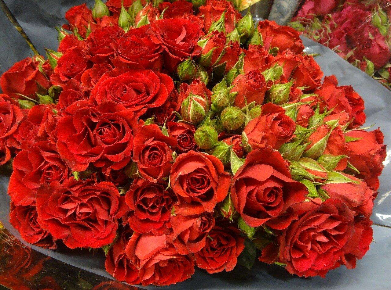 С днем Святого Валентина! 0_88e9d_f94dc2e3_-1-XXXL