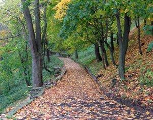 Осенний фотоконкурс 0_811fd_ca048a32_-1-M