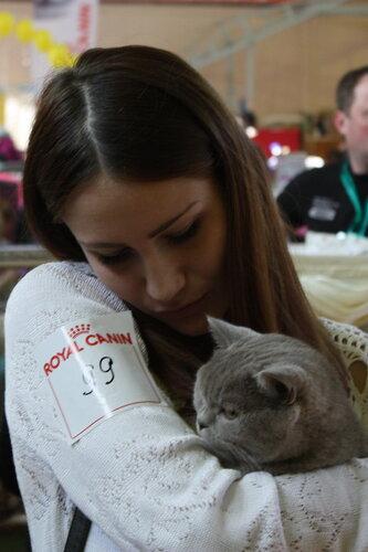 """Международная выставка кошек """"Удивительные кошки"""", 5-6 октября 2013, г. Сургут, ХМАО - Страница 2 0_ddb63_f0f80dcc_L"""