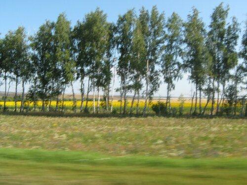 Земля Пензенская... 0_f249b_b8b8e981_L