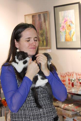 """Международная выставка кошек AFC """"Удивительные лесные кошки"""", 1 марта 2014 г. Сургут - Страница 2 0_e4999_bc84b11_L"""