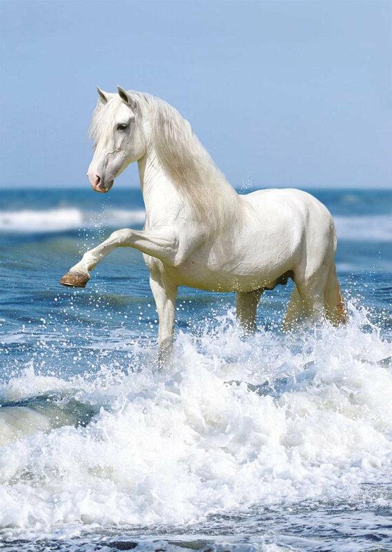 Обожаю лошадей!   0_fd98e_abcac68b_XL