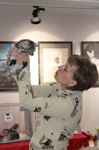 """Международная выставка кошек AFC """"Удивительные лесные кошки"""", 1 марта 2014 г. Сургут - Страница 2 0_e499d_41876d75_L"""