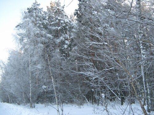 Северная (Скандинавская) ходьба - Страница 6 0_ddd86_69b22799_L