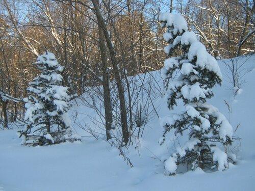 Северная (Скандинавская) ходьба - Страница 6 0_ddd7b_950201f0_L