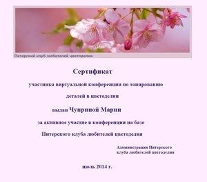Сертификаты виртуальной конференции по тонированию 0_e7352_5f4331f3_M