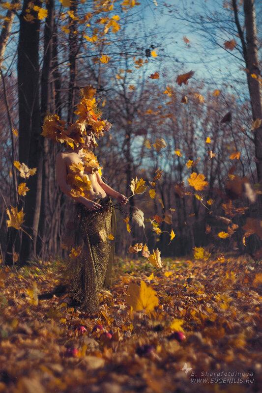 ... Y caen las hojas, llega ....¡¡¡ EL Otoño !!! - Página 6 0_97238_ca06bcb5_XL
