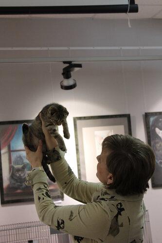 """Международная выставка кошек AFC """"Удивительные лесные кошки"""", 1 марта 2014 г. Сургут - Страница 2 0_e4992_1a8c82e_L"""
