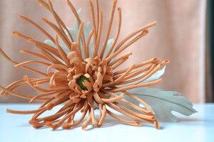 Астры и хризантемы - Страница 7 0_c6a78_98f2f1b0_M