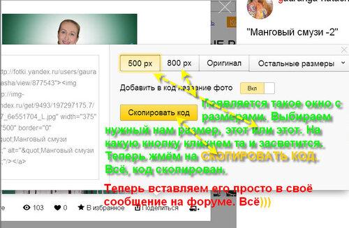 Фотохостинги для хранения ваших фотографий 0_d6681_b462c374_L