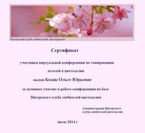 Сертификаты виртуальной конференции по тонированию 0_e7350_3b961b23_M