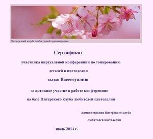 Сертификаты виртуальной конференции по тонированию 0_e734f_96870ba1_M